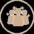 Prooftag Cerv PaaS module - BackCerv feedback analysis